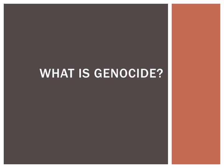 what is genocide n.