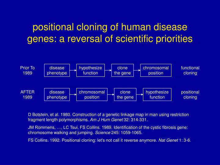 positional cloning of human disease