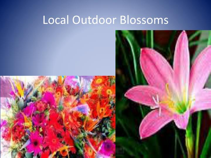 Local Outdoor Blossoms