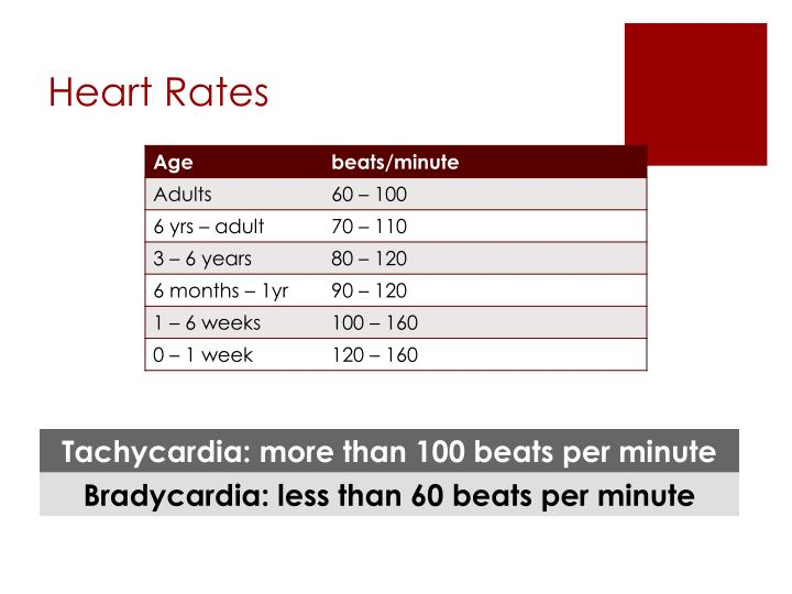 Heart Rates