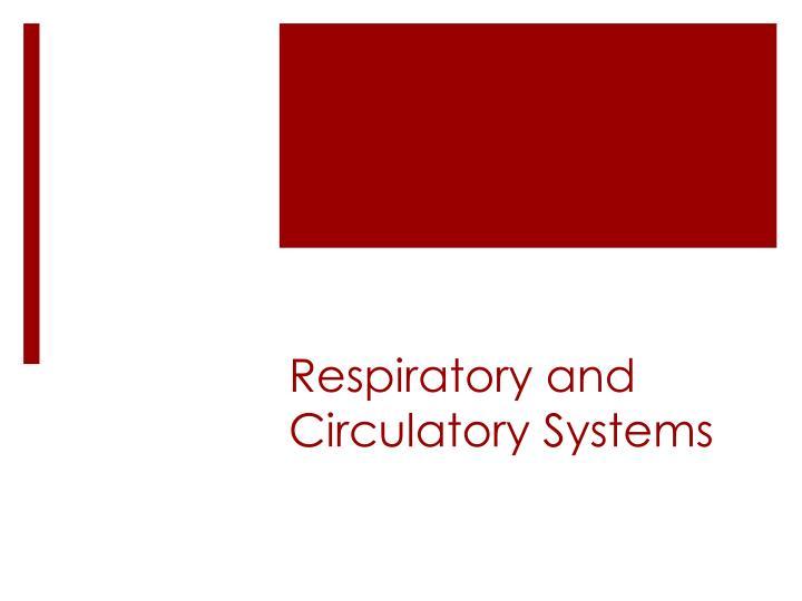 Respiratory and circulatory systems