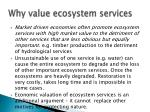 why value ecosystem services