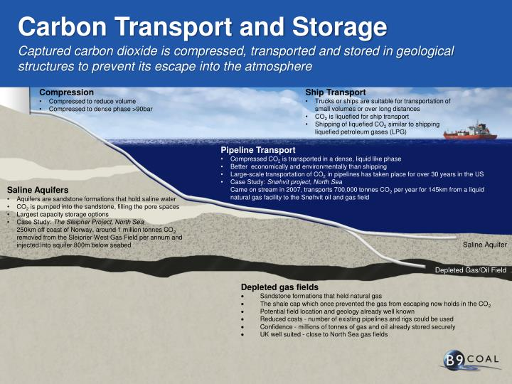 Carbon Transport and Storage