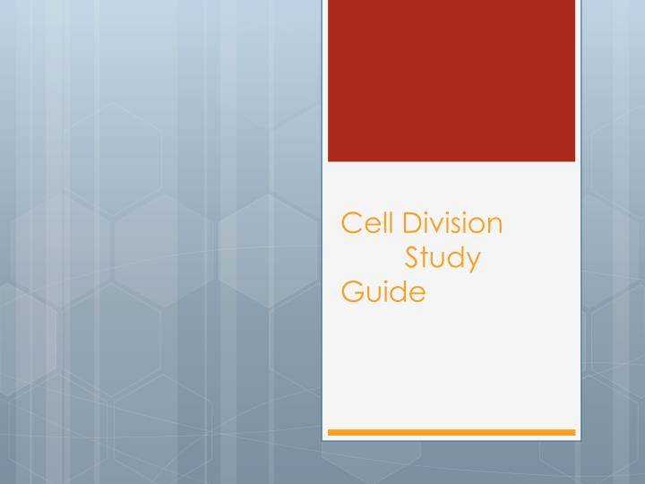 cell division study guide n.
