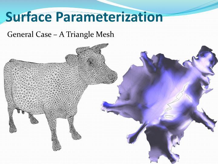 Surface Parameterization