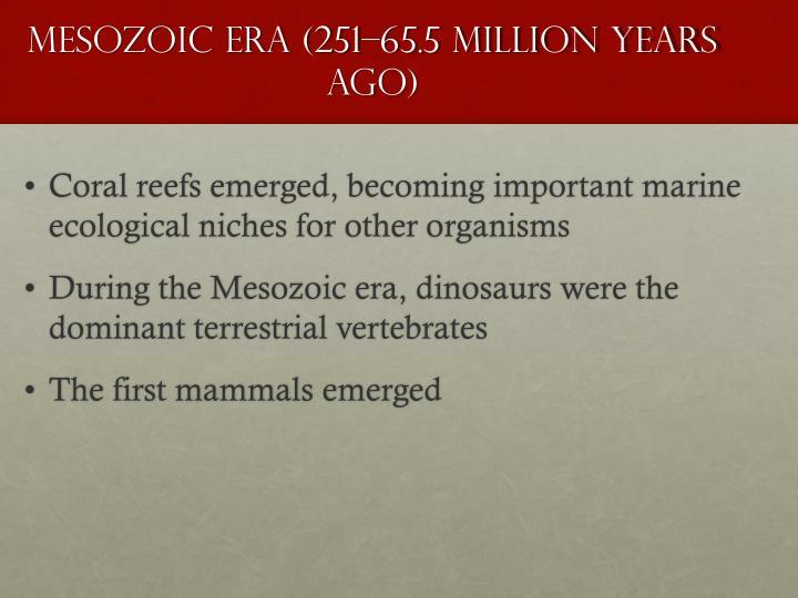 Mesozoic Era (251–65.5 Million Years Ago)
