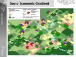 socio economic gradient1