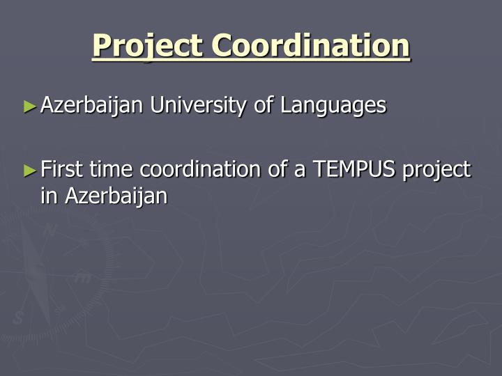 Project coordination