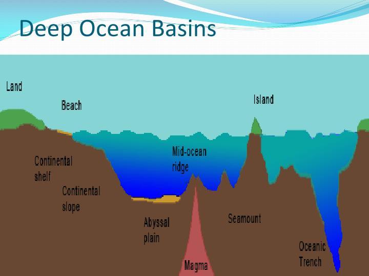 Deep Ocean Basins