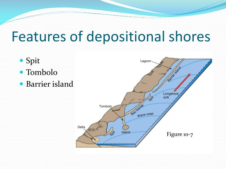 Features of depositional shores