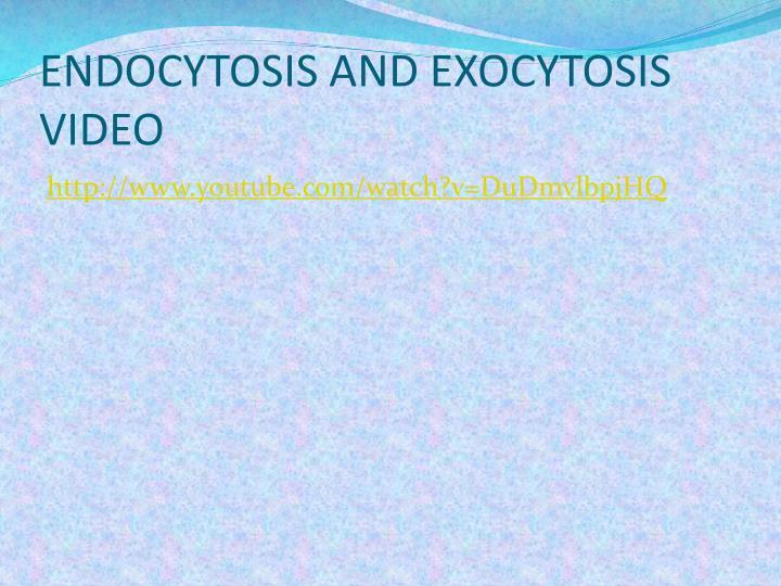 ENDOCYTOSIS AND EXOCYTOSIS VIDEO