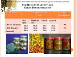 the bought harvest kg seeds production g