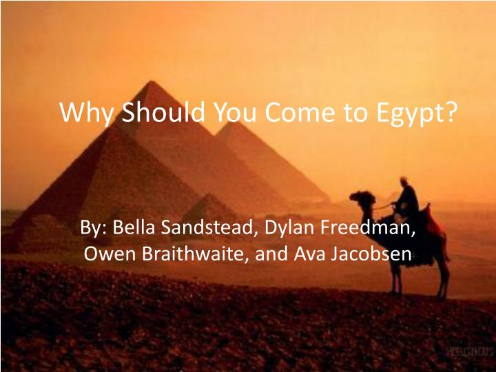 why should you come to egypt n.
