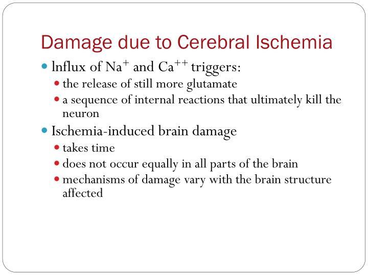 Damage due to Cerebral Ischemia
