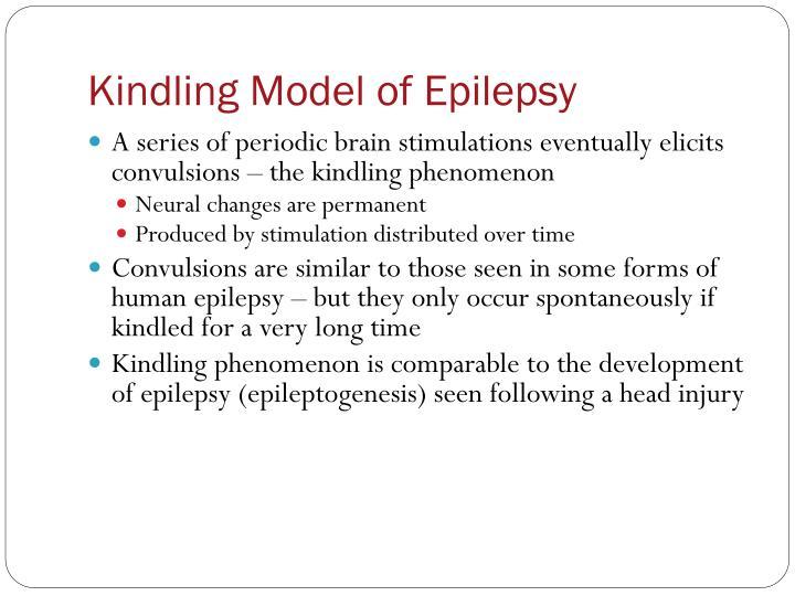 Kindling Model of Epilepsy