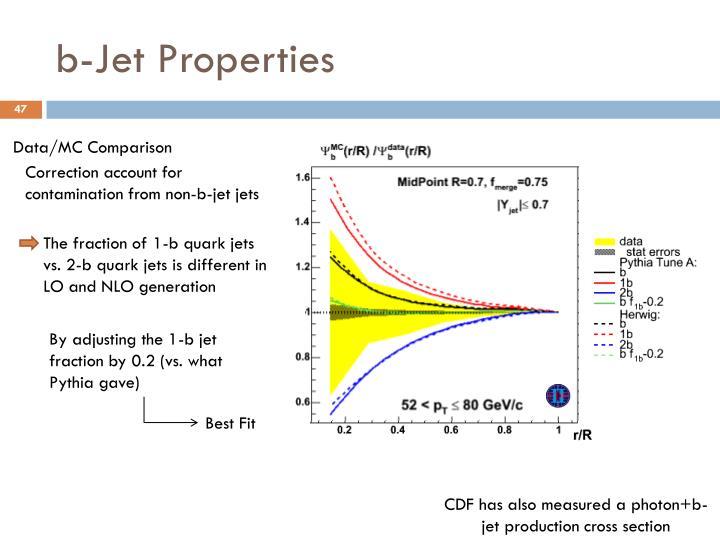 b-Jet Properties