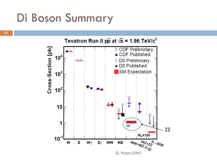 Di Boson Summary