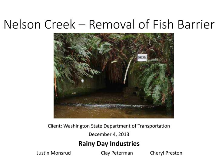 nelson creek removal of fish barrier n.