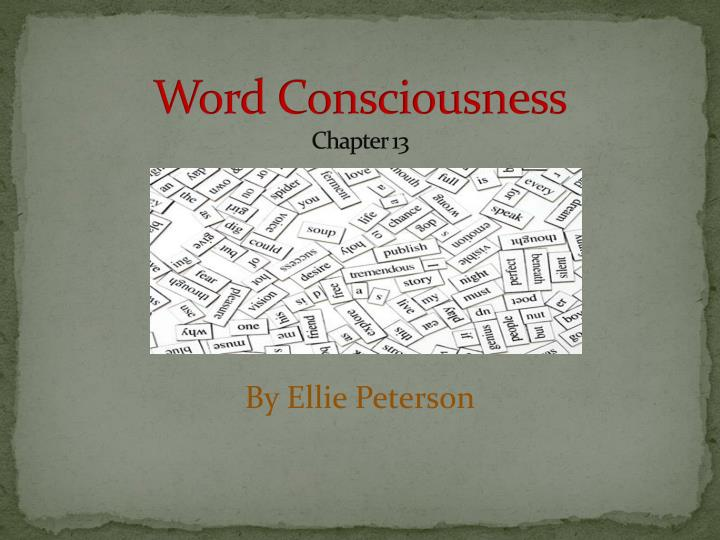 word consciousness chapter 13 n.