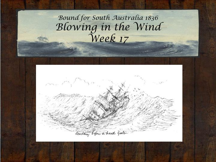 bound for south australia 1836 blowing in the wind week 17 n.