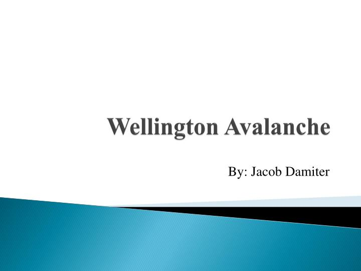 wellington avalanche n.