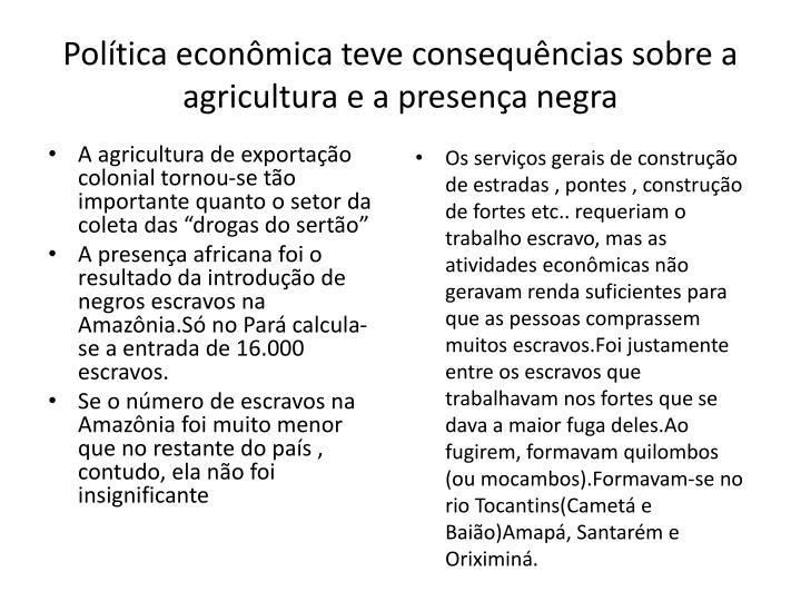 Política econômica teve consequências sobre a agricultura e a presença negra