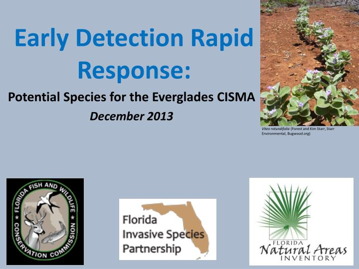 early detection rapid response n.