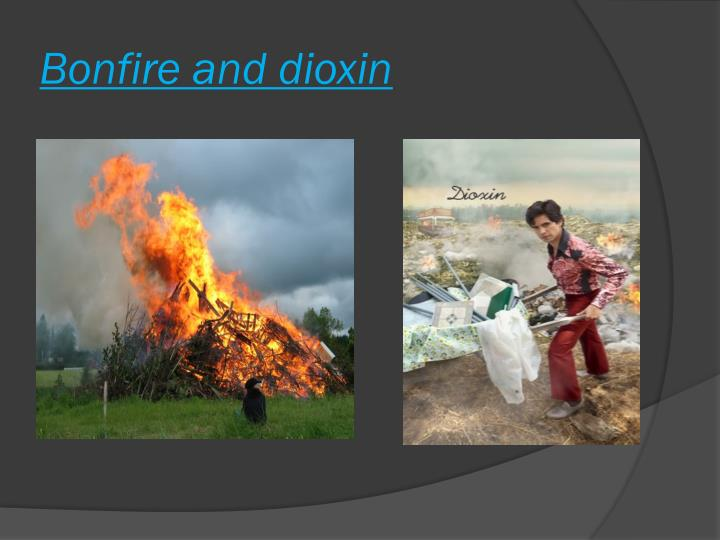 bonfire and dioxin n.