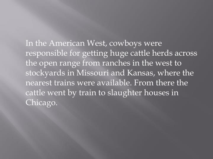 In the American West, cowboys were responsible for getting huge cattle herds across the open range from ranches in the west to stockyards in Missouri and Kansas, where the nearest trains were available. From there the cattle went by train to slaughter houses in Chicago.