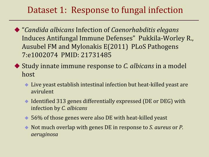 Dataset 1:  Response to fungal infection