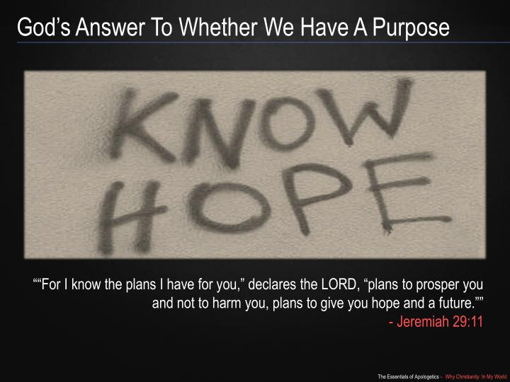 God's Answer To Whether We Have A Purpose