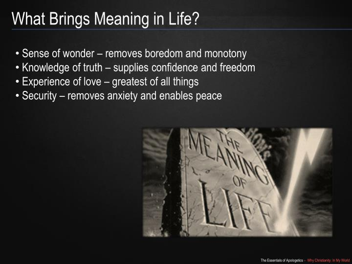 What Brings Meaning in Life?