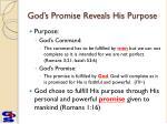 god s promise reveals his purpose