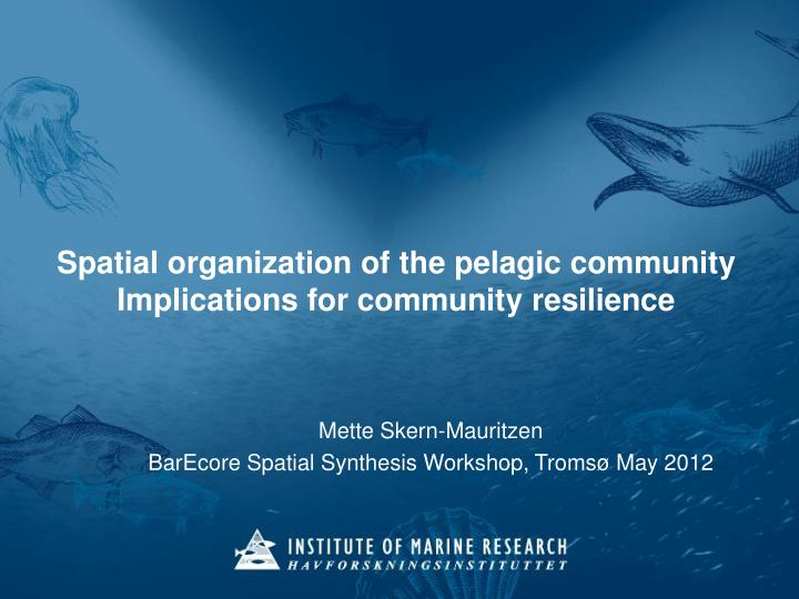 spatial organization of the pelagic community implications for community resilience n.
