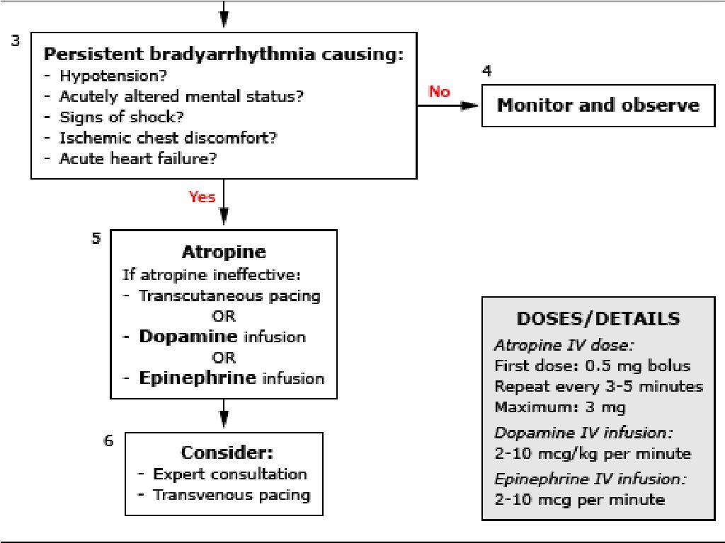 Epinephrine drip