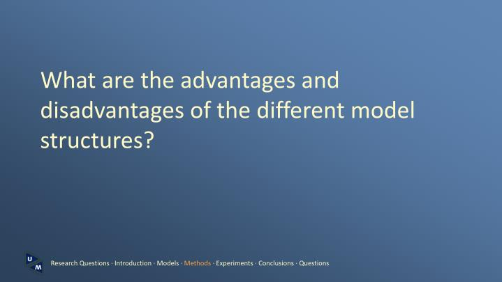 What are the advantages and disadvantages of the different model structures?