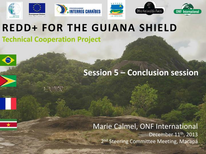 Redd for the guiana shield technical cooperation project