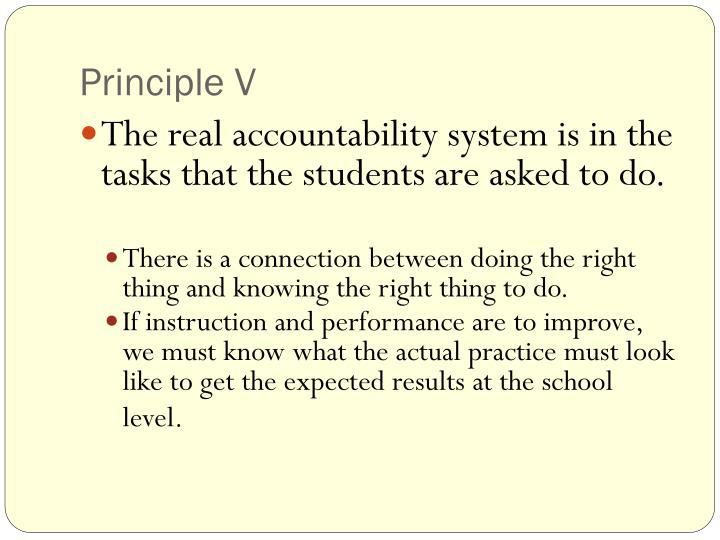 Principle V