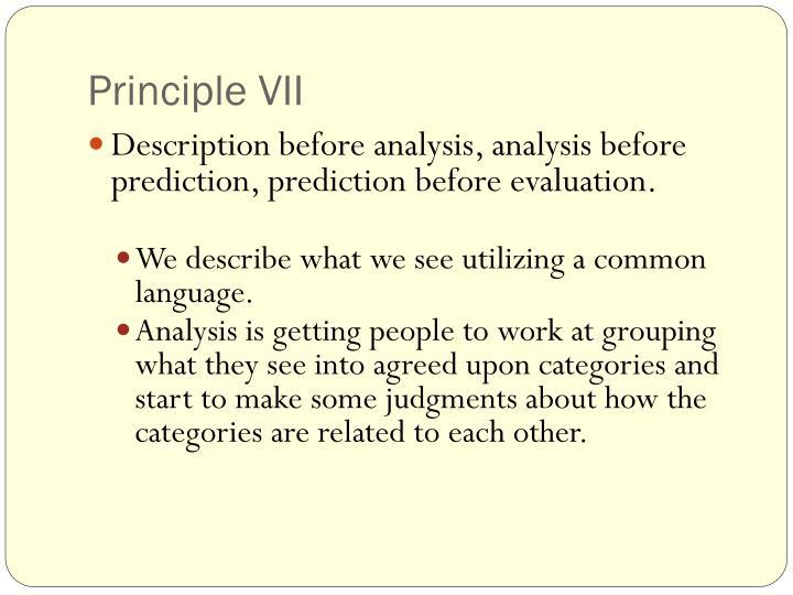 Principle VII