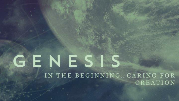 in the beginning caring for creation n.