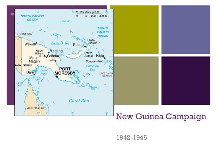 new guinea campaign n.
