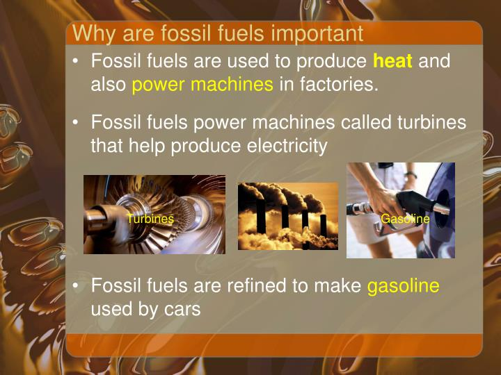 are fossil fuels an inexhaustible resource environmental sciences essay Fifth grade (grade 5) environmental science questions for your custom printable tests and worksheets in a hurry browse our pre-made printable worksheets library with a variety of activities and quizzes for all k-12 levels.