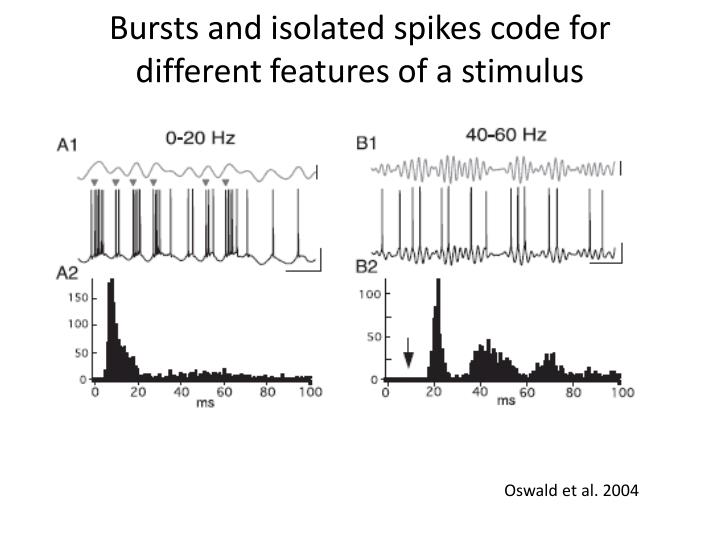 Bursts and isolated spikes code for different features of a stimulus