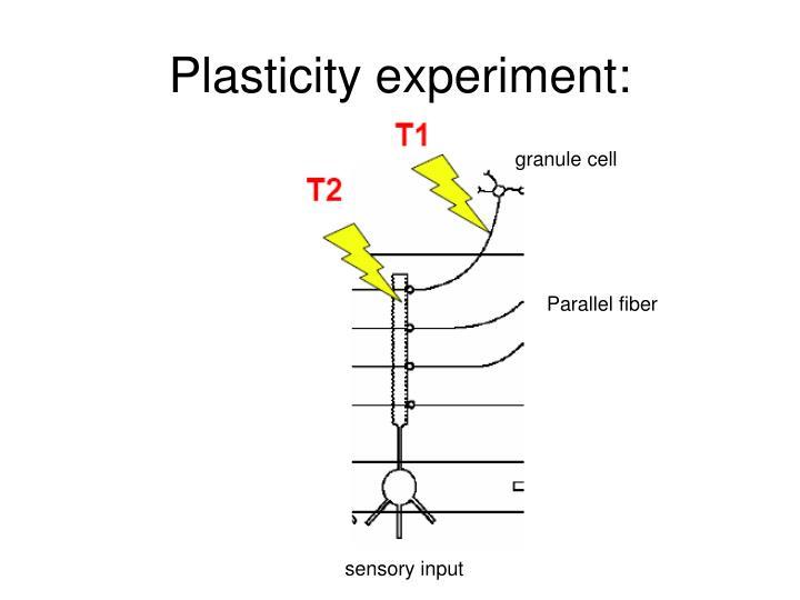 Plasticity experiment: