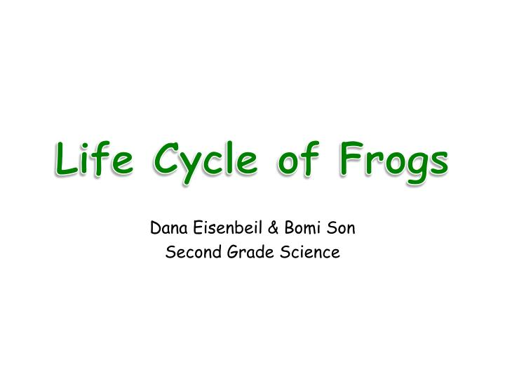 life cycle of frogs n.