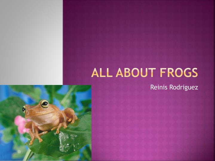 all about frogs n.