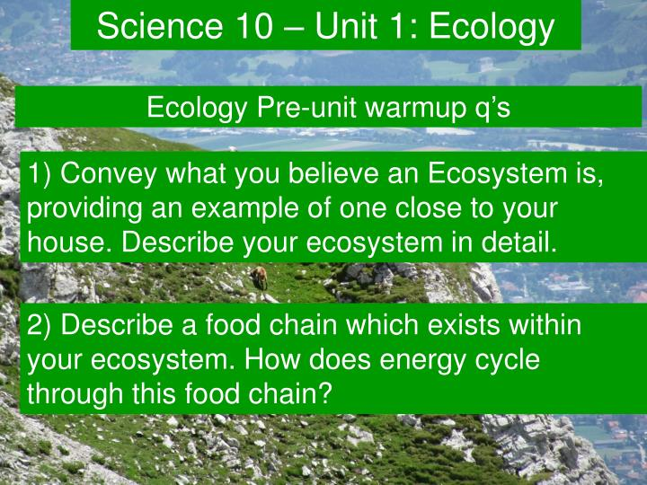 unit 1 diversity in ecosystems n.
