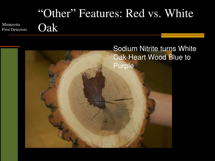 """Other"" Features: Red vs. White Oak"