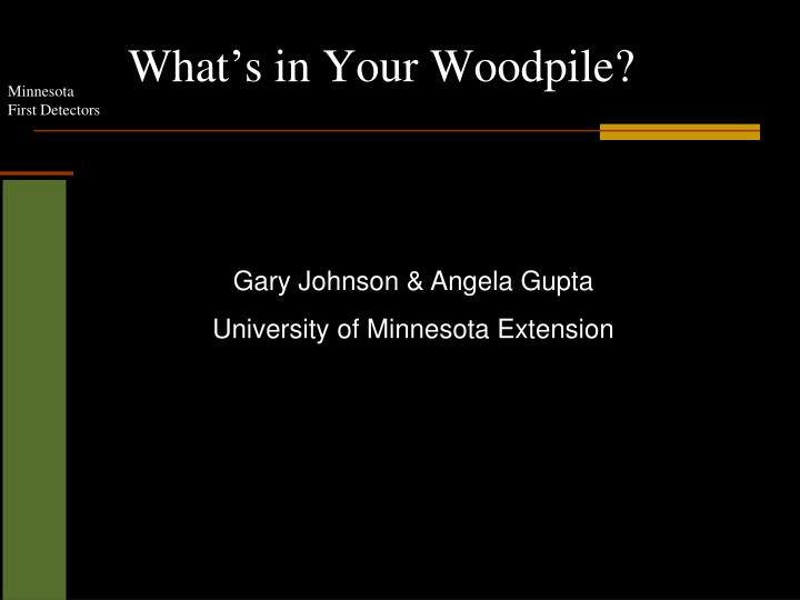 What s in your woodpile