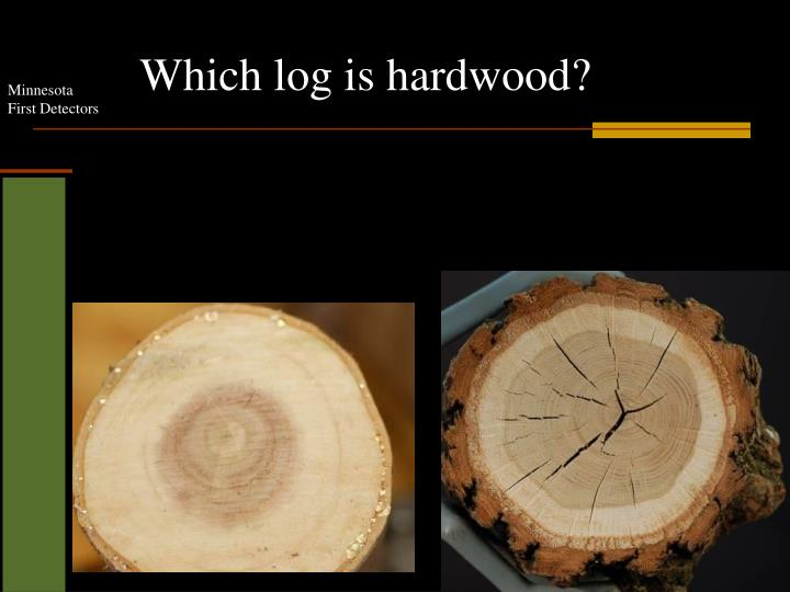 Which log is hardwood?